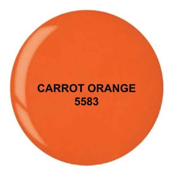 Dip System puder kolorowy Carrot Orange 14 g 5583