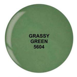 Dip System puder kolorowy Grassy Green 14 g 5604