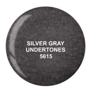 Dip System puder kolorowy Silver Gray Undertones 14 g 5615