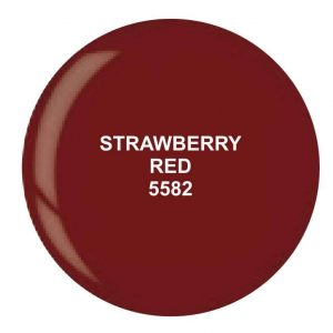 Dip System puder kolorowy Strawberry Red 14 g 5582