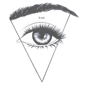 Oko z podzialem 1