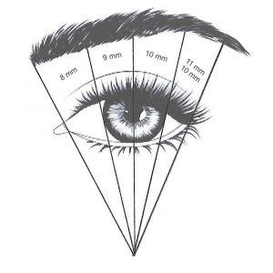 Oko z podzialem 4