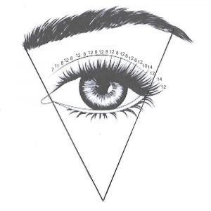 Oko z podzialem 5